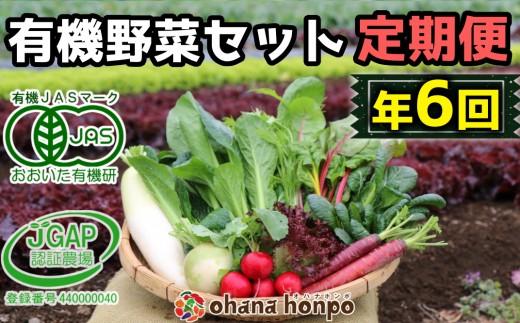有機JAS認証★ohanaのオーガニック野菜セット定期便≪年6回コース(偶数月)≫