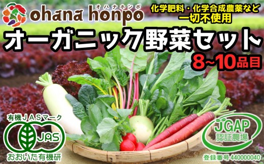 有機JAS認証★ohanaのオーガニック野菜セット(8~10品目)