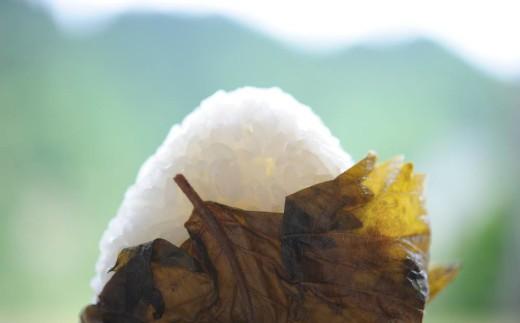 深い山で育った美味しい魚沼産コシヒカリ