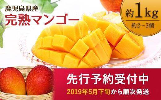【13380】鹿児島県産 南国の恵み 完熟 マンゴー 1kg(先行予約)