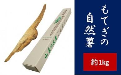 もてぎの自然薯(約1kg)