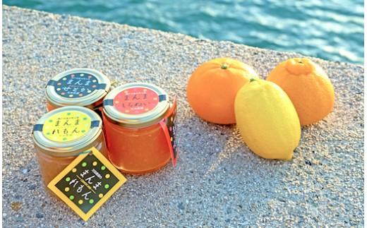 自家栽培の果実で作る「まんまジャム」3本セット