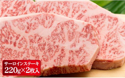 NA65 【全2回定期便】極旨!長崎和牛サーロインステーキ&サイ-2