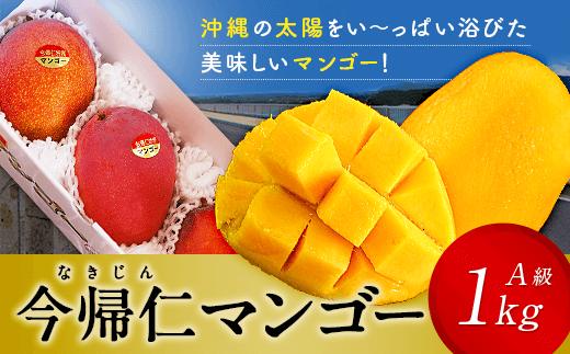 今帰仁マンゴーA級品1kg【先行予約】【2020年7月~8月頃発送】生産者直送