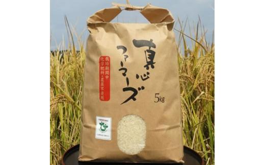 菜の花米(ミルキークイーン) 5kg【1030322】