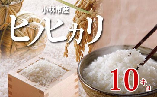 【西諸米穀商協同組合】小林産ヒノヒカリ10kg 31-NB02