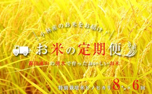 【定期便】【30年産】山麓の特別栽培米ヒノヒカリ(48㎏) 30-0026