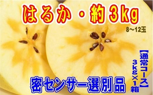 高級りんご「はるか」約3kg【2020年11月収穫分・先行受付】