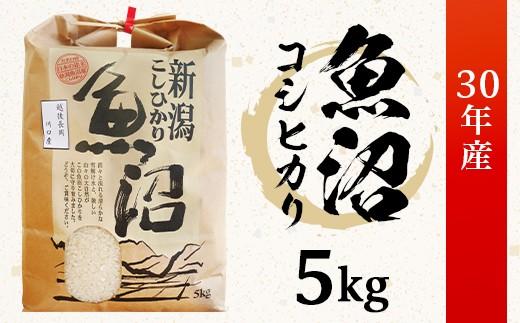 1-422【H30年産】新潟県魚沼産(長岡川口地域)コシヒカリ5kg