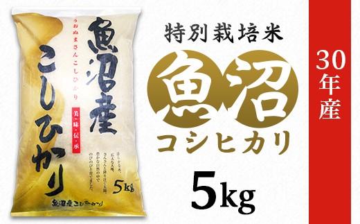 1-420【H30年産】新潟県魚沼産コシヒカリ(長岡川口地域)5kg