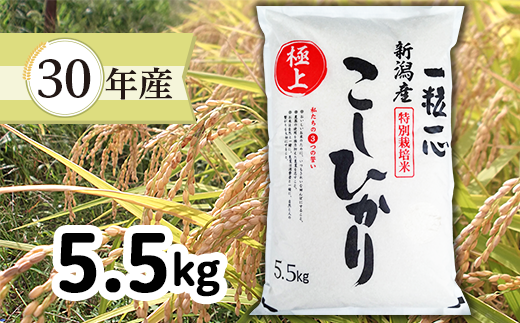 【H30年産】新潟県長岡産特別栽培米コシヒカリ5.5kg