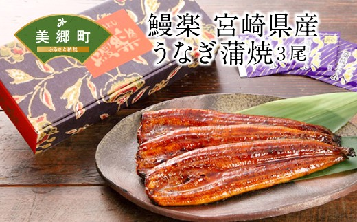 No.049 鰻楽 宮崎県産うなぎ蒲焼3尾(計480g)