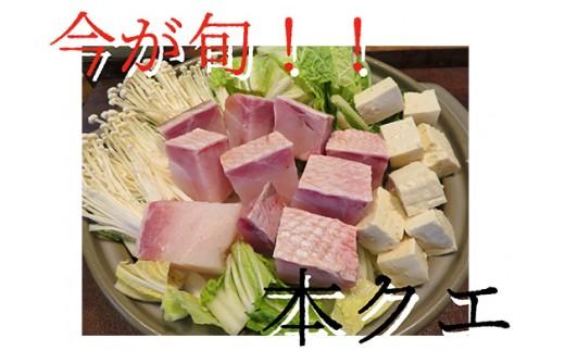 456.今が旬!【数量限定】クエ鍋用 本クエ切り身(500g)