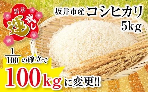 [A-3203] 【新春 運試し!】 坂井市産コシヒカリ5kg ~1/100の確率でなんと米100kgに変更!~