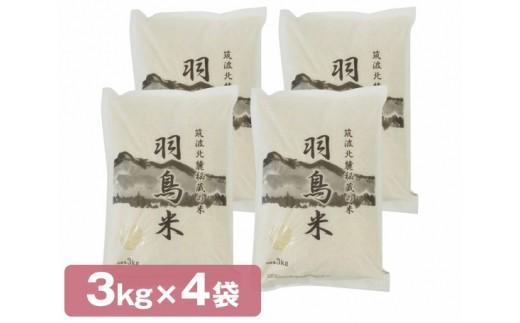 No.088 筑波北麓秘蔵の米 羽鳥米 12kg / お米 コシヒカリ 茨城県 人気
