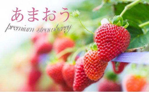 福岡県のみで栽培されている「あまおう」