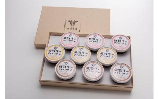 放牧牛アイスクリーム9個セット(ミルク・いちご・チョコ)【01002】