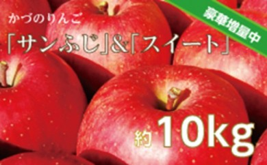 [№5764-0406]りんご「サンふじ」と「すい~と」の詰め合わせ約10kg