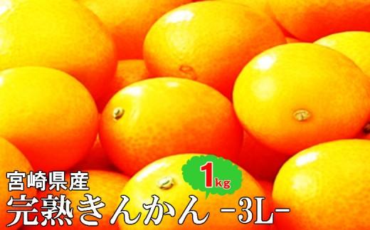 i3605期間限定!糖度16度以上『川南産完熟金柑』3Lサイズ(1kg)