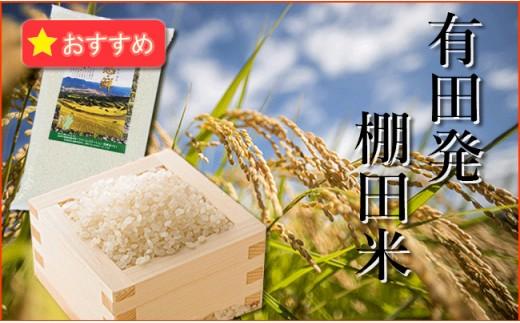 K10-2 有田発の棚田米・心感鮮(シンカンセン)10kg
