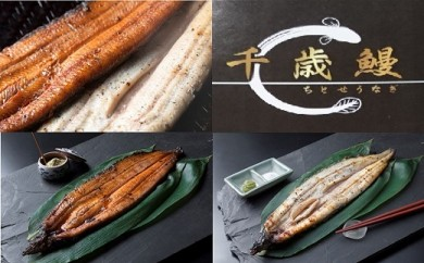 鹿児島県大隅産  千歳鰻の白焼4尾・蒲焼き4尾