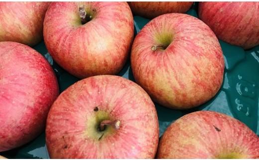 0003-102 ご家庭用ふじりんご 10kg