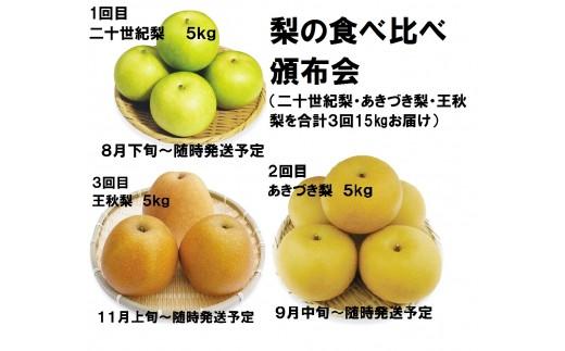 DS-11 梨の食べ比べ頒布会(二十世紀梨・あきづき梨・王秋梨)