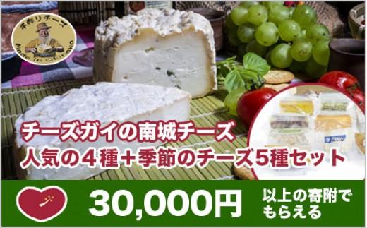 CG02:チーズガイの南城チーズ 人気の4種+季節のチーズ5種セット
