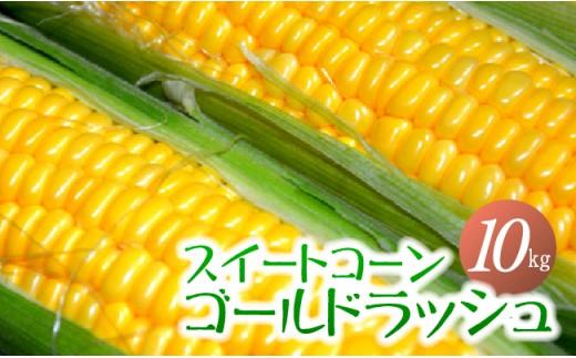i3904「井上農園」朝もぎ直送スイートコーン(ゴールドラッシュ)5.0㎏×2箱