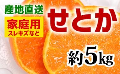 [№5745-2895]【産地直送】家庭用 せとか 約5kg(S~3L)