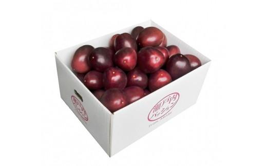 L-7 パッションフルーツ(バラ詰め3kg)たけはら農園