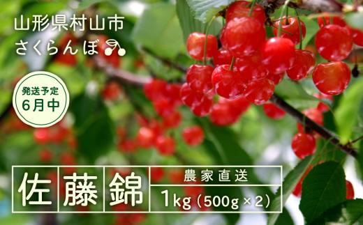 011-A01 【さくらんぼ】2019年産佐藤錦 1kg詰