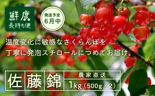012-A04 【さくらんぼ】2019年産佐藤錦 1kg詰 発泡スチロール梱包