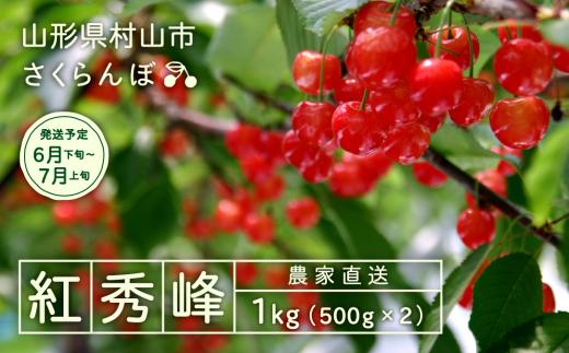 012-A05 【さくらんぼ】2019年産紅秀峰 1kg詰