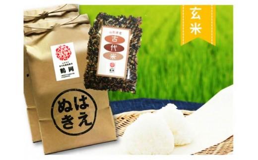 B01-004 特別栽培米はえぬき玄米(10kg)・古代米(300g)