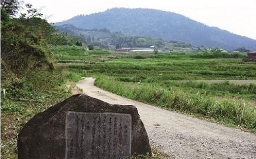 CE-2.【記紀万葉ふるさと巡り】観光ツアータクシー 山の辺の道コース(2時間利用)