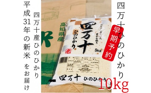 460.【平成31年新米・早期予約】四万十市産「ひのひかり」10kg