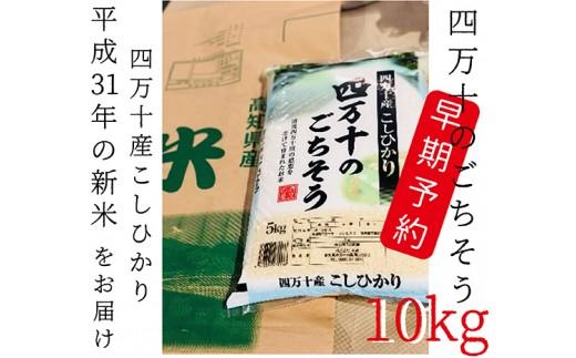 459.【平成31年新米・早期予約】四万十市産「こしひかり」10kg