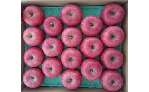 720 【先行予約】りんご サンふじ 約10kg(28玉~40玉)