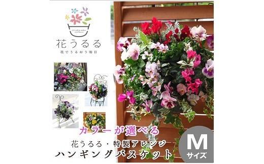 01D-108 花うるる特製アレンジ・おまかせハンギングバスケット~Mサイズ