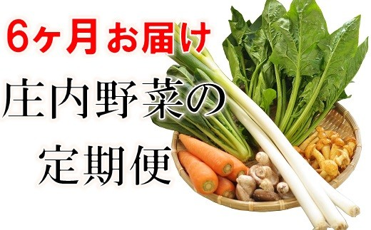 【6ヶ月お届け】庄内野菜の定期便