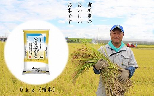 010-014 【厳選米!食味値80以上】特栽米コシヒカリ 吉川のしずく5kg