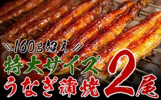 A363-e ★大満足★うなぎ蒲焼(長焼2尾入)【6月配送分】