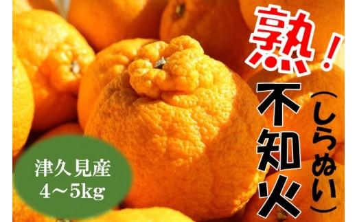 A-052 津久見産不知火(しらぬい)
