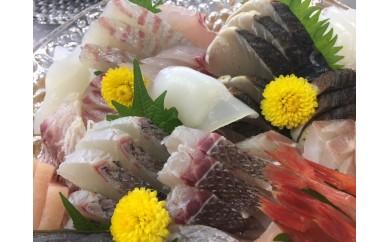 [№5684-1348]本州配送限定  産地直送 氷見漁港 朝どれ鮮魚お刺身セット