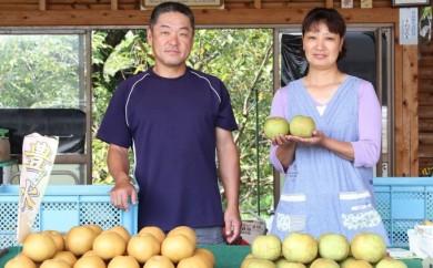 [№5563-0227]本村果樹園 にしき梨【秋麗】5kg