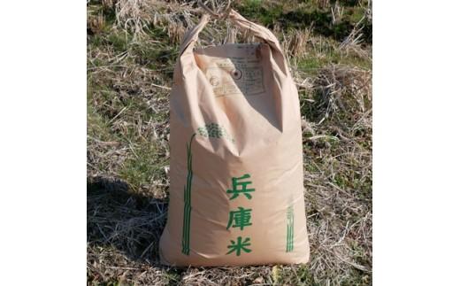 <2019年産>特別栽培米(ヒノヒカリ) 精米30kg 【1034120】