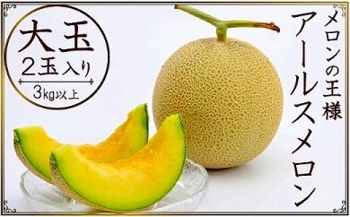 <限定>高級フルーツの代名詞 アールスメロン 2玉(3キロ以上)