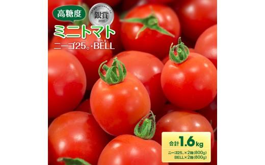 AB55 『数量限定』高糖度ミニトマト『ニーゴ25。』『BELL(ベル)』合計1.6kg