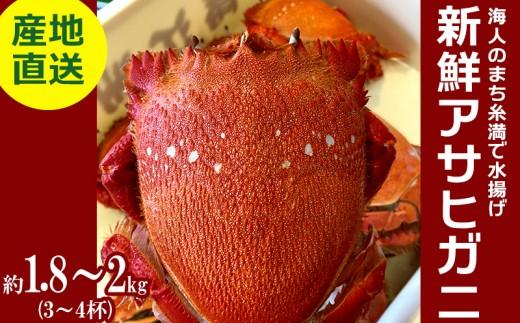 沖縄県糸満産「漁師のまち」で水揚げ!直送!新鮮アサヒガニ(3~4杯)
